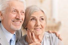 Hugging senior couple on blurred. Portrait of hugging senior couple on blurred background Stock Photo