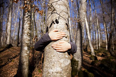 Hugging a tree. A girl hugging a tree on the woods Stock Images