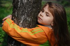 Hugging the tree Stock Photography