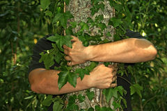 Hugging a tree Stock Photo