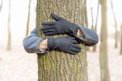 Hugging the Tree Royalty Free Stock Image