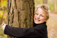 Hugging tree Royalty Free Stock Photos
