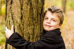Hugging tree Royalty Free Stock Photo
