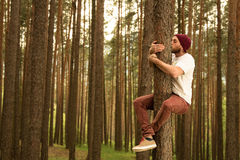 Hugging Trees Stock Photos