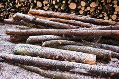 huggit av förberett vinterträ för brand stapel royaltyfria bilder