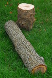 huggit av trä Fotografering för Bildbyråer