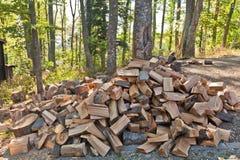 huggit av trä Arkivfoton