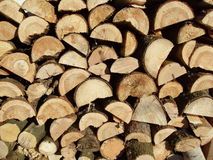 huggit av trä Royaltyfri Fotografi