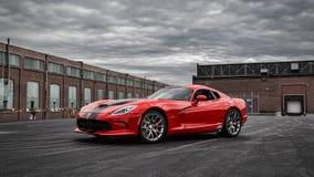 Huggorm GTS för 2014 SRT Arkivbild