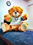 Huggy Teddy stock foto