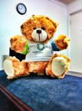 Huggy Teddy. A cuddly teady bear ready to give you the cutest hug whenever you need it Stock Photo