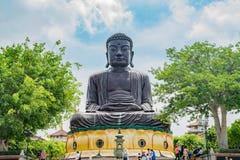 Hugh Buddha staty i landskap för Buddha för åtta Trigramberg Royaltyfri Foto