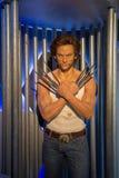 Hugh Jackman Wolverine Wax Figure royaltyfria foton