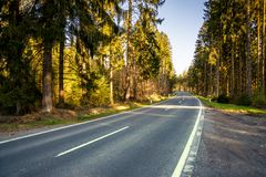 Highway into Silent Forest in spring with beautiful bright sun r. Hughway into Silent Forest in spring with beautiful bright sun rays - wanderlust Royalty Free Stock Photo