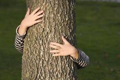 Huging ein Baum Lizenzfreies Stockfoto