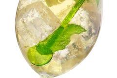 Hugo Cocktail royalty-vrije stock afbeeldingen
