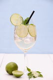 Hugo cocktail with lime, mint and elderflower syrup. Vertical royalty free stock photos