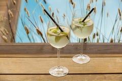 Hugo prosecco elderflower soda ice summer drink. Outdoor aperitif Stock Images