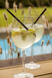 Hugo prosecco elderflower soda ice summer drink Royalty Free Stock Photos
