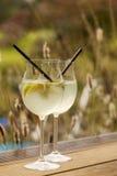 Hugo prosecco elderflower soda ice summer drink Royalty Free Stock Photos