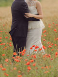 Hugs in Poppy Field Royalty Free Stock Photos