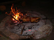 Huhn auf Feuer Lizenzfreies Stockfoto