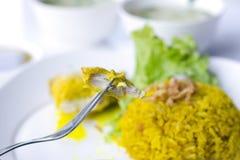 Huhn Biryani mit grünem Chutney lizenzfreies stockbild