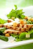 Huhn-Caesar-Salat Lizenzfreie Stockfotografie