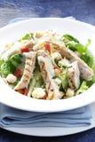 Huhn-Caesar-Salat Stockbild