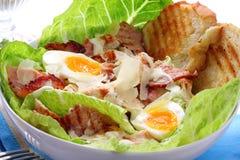 Huhn-Caesar-Salat Lizenzfreies Stockbild