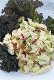 Huhn-Curry-Salat Stockbild