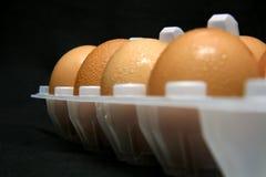Huhn-Eier stockbild