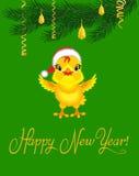 Huhn in einem Hut von Santa Claus unter dem Weihnachtsbaum Stockbilder