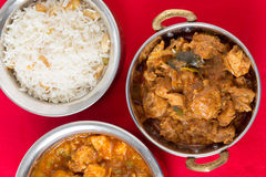 Huhn Malabar mit Reis Lizenzfreie Stockbilder