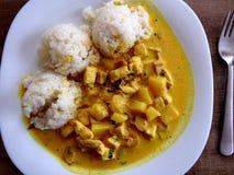 Huhn mit Ananas und Reis Lizenzfreies Stockbild
