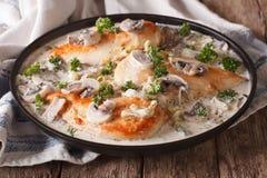 Huhn mit Pilzen und Porree in einer sahnigen Soßennahaufnahme Lizenzfreie Stockbilder