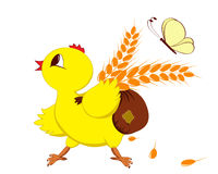 Huhn mit Weizen Stockfotos