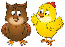 Huhn und Eule Stockfotos