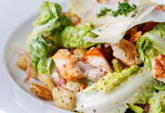Huhn und Salat Stockfotografie