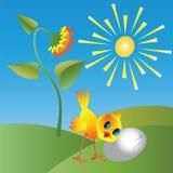 Huhn und Sonnenblume Stockfotos