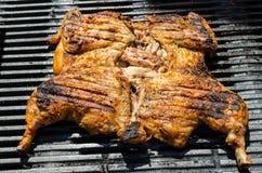 Huhn unter einem Ziegelstein mit panzanella Salat Stockfotografie