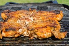 Huhn unter einem Ziegelstein mit panzanella Salat Lizenzfreie Stockfotos