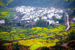 Hui style architecture and path and rape flowers terraced fields Royalty Free Stock Photos