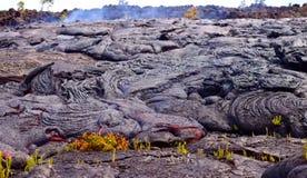 Huidige lava op de oppervlakte van de aarde Vloeibare lava stock fotografie