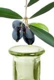 Huile d'olive de Vierge Photographie stock libre de droits