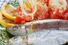 Huile d'olive se renversante en sardines très fraîches Photo stock