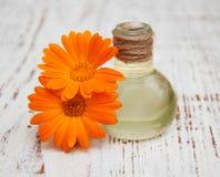 Huile de Calendula dans une bouteille en verre Photographie stock libre de droits
