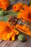 Huile de Calendula dans une verticale de plan rapproché de bouteille en verre Images stock