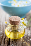 huile de camomille photographie stock libre de droits