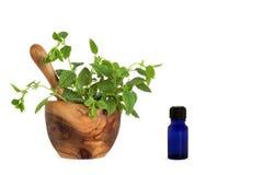 huile de citron essentielle d'herbe de baume Photo libre de droits